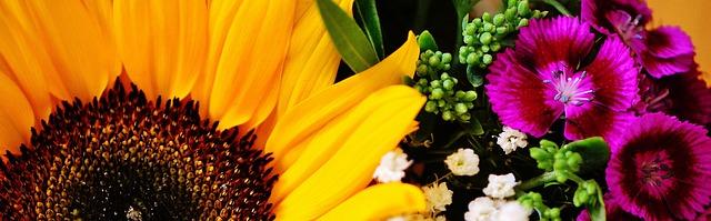 letní květy