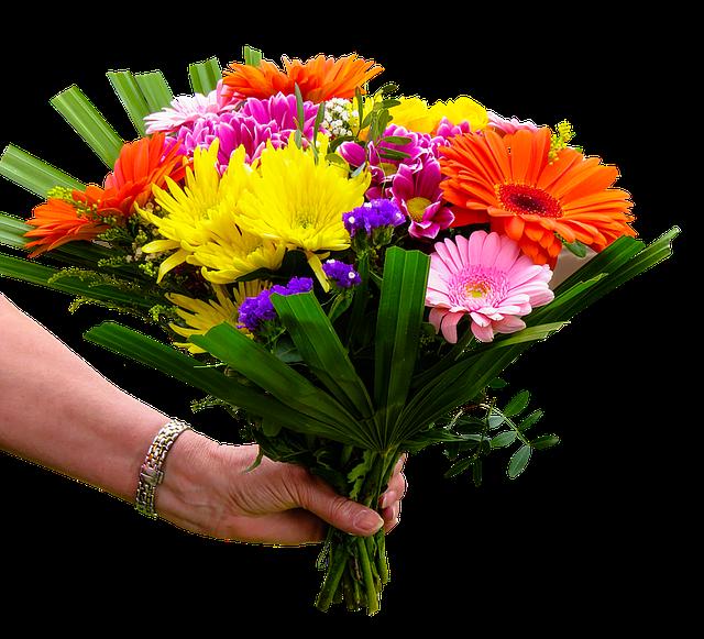 podaná květinka